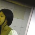 新年一作目 美脚揃い 【美しい日本の未来219】